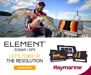 Raymarine AUS Element HV MPU