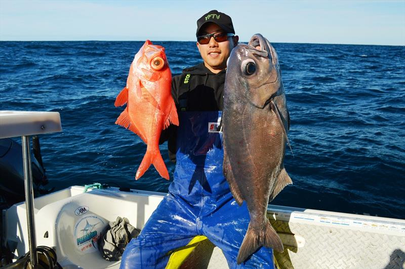 Jonah Yick with an Imperador and Blueye Trevalla - photo © Carl Hyland