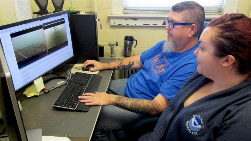 Paul Clark and Gillian Phillips at Milford Lab reviewing GoPro footage. - photo © NOAA Fisheries