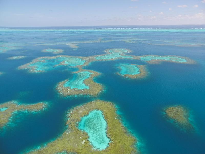 An aerial view of the coral patch reefs inside the lagoon at Pearl and Hermes Atoll. - photo © NOAA Fisheries / Steven Gnam