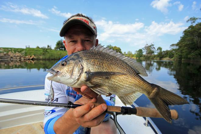 Big bream are a nice by catch. © Jarrod Day