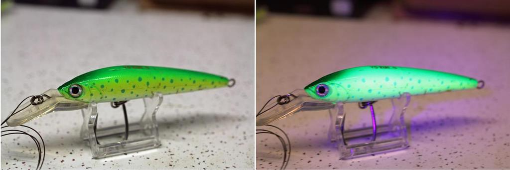 Yo-Zuri Hydro Magnum looks a lot different to fish than people. © Jarrod Day
