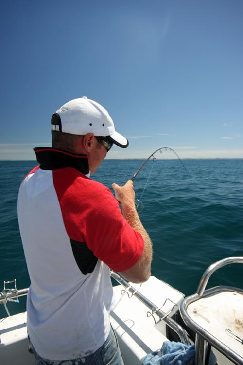 When fishing deep water, you need to be gentle you they may fall off the hook. © Jarrod Day